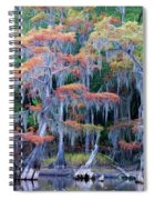 Swamp Dance Spiral Notebook
