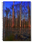 Swamp In Cypress Gardens Spiral Notebook