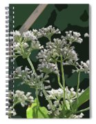 Swamp Milkweed Abstract Spiral Notebook
