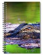 Swamp Patrol Spiral Notebook