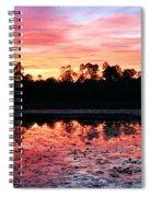 Swamp Sunset Spiral Notebook
