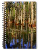 Swamp Trees Spiral Notebook