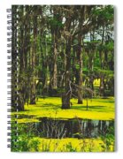 Swampy Beauty Spiral Notebook