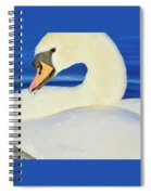 Swan 9 Spiral Notebook