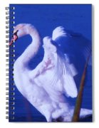 Swan At Cape May Point State Park  Spiral Notebook