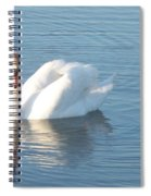 Swan Cape May Spiral Notebook