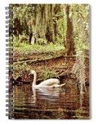 Swan Dreams Spiral Notebook