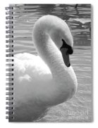 Swan Elegance Black And White Spiral Notebook