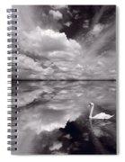 Swan Lake Explorations B W Spiral Notebook
