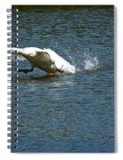 Swan Landing 2 Spiral Notebook