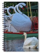 Swan Meeting Up With Some Friends Spiral Notebook