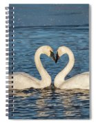 Swan Heart Spiral Notebook