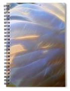 Swan Wing One Spiral Notebook