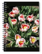 Swanhurst Tulips Spiral Notebook