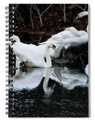 Swans And Snow Geese Spiral Notebook