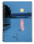 Swans And The Moonrise In Stockholm Spiral Notebook