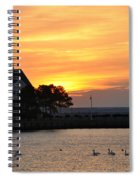 Swans At Sunrise  Spiral Notebook