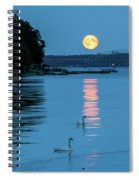 Swans Gliding Into The Moonlight During A Moonrise In Stockholm Spiral Notebook