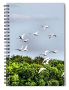 Swans In Flight Spiral Notebook