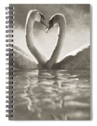 Swans In Lake Spiral Notebook