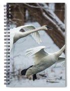 Swans Landing Spiral Notebook