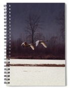 Swans Over The Marsh Spiral Notebook