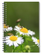 Sweat Bee Spiral Notebook