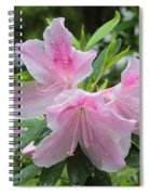 Sweet Azaleas Spiral Notebook