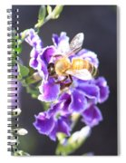 Sweet Bee Spiral Notebook