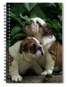 Sweet Couple Spiral Notebook