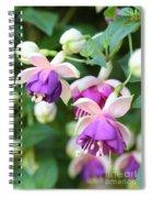 Sweet Fuchsia Flowers Spiral Notebook