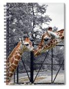 Sweet Moment Spiral Notebook