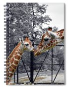 Sweet Moment Spiral Notebook