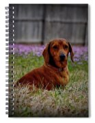 Sweet Neal Spiral Notebook