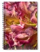 Sweet Notes Spiral Notebook