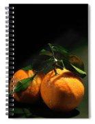 Sweet Orange Spiral Notebook