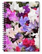 Sweet Pea Spencer Flowers Spiral Notebook
