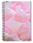 Sweet Pink Tulip Spiral Notebook