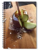 Sweet To The Core  Spiral Notebook
