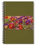 Sweet Viola Spiral Notebook