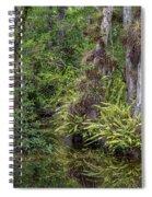Sweet Water Strand - 12 Spiral Notebook