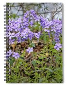 Sweet William Spiral Notebook