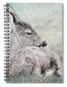 Sweet Young Deer Spiral Notebook