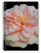 Sweetheart Rose Spiral Notebook