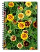 Sweeties Spiral Notebook