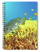 Sweetlips Spiral Notebook