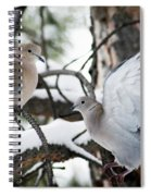 Sweetness In The Trees Spiral Notebook