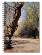 Sweetwater 7 Spiral Notebook