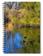 Sweetwater 8 Spiral Notebook