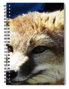 Swift Fox With Oil Painting Effect Spiral Notebook